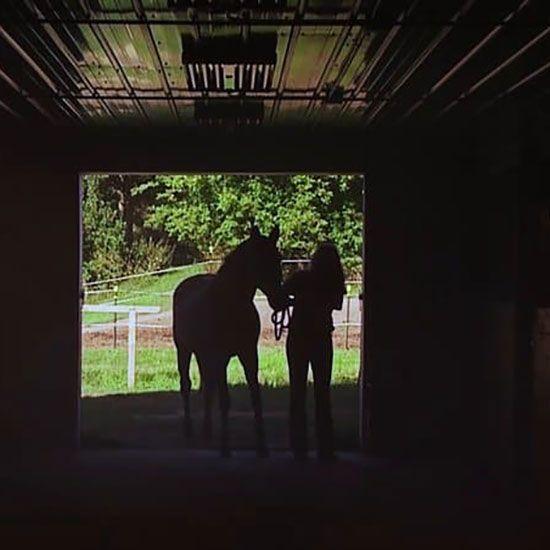 Showcase Video – HUGS Ranch