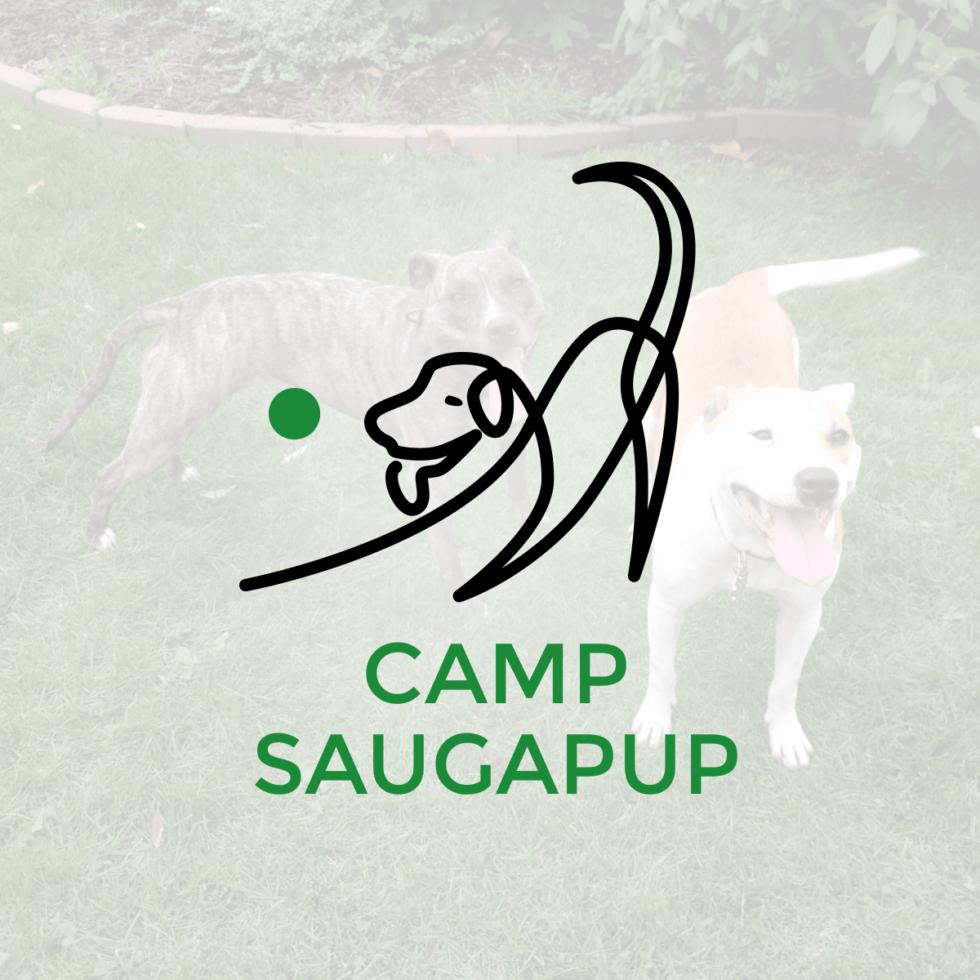 Unique Logo Design – Camp Saugapup
